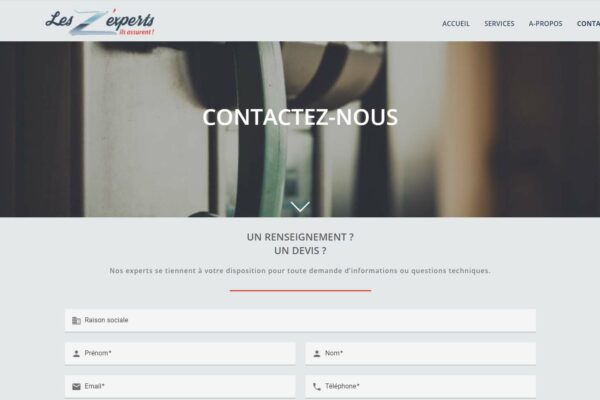 les_zexperts3